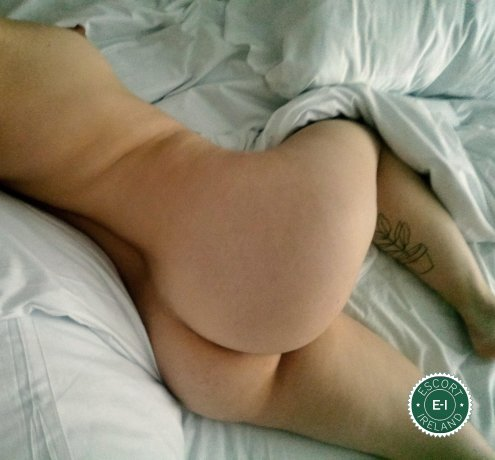 Gia Bruni is a top quality Canadian Escort in Belfast City Centre