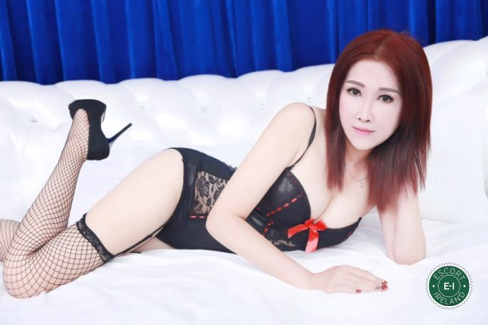 Book a meeting with Celinar in Athlone today
