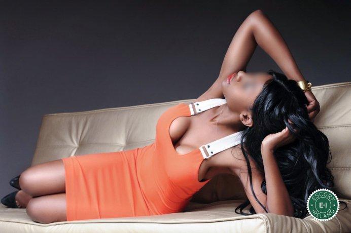 Meet the beautiful Trisha Winston UK in Dublin 2  with just one phone call