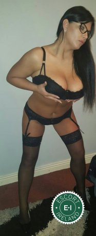 Book a meeting with Michele in Limerick City today