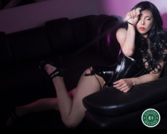 TV Jenn LoVe is a high class Cuban escort Dublin 18, Dublin