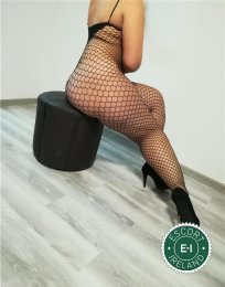 The massage providers in Killarney are superb, and VIP Paloma Massage is near the top of that list. Be a devil and meet them today.