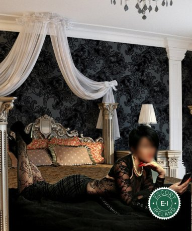 Royal Massage is one of the best massage providers in Dublin 24, Dublin. Book a meeting today