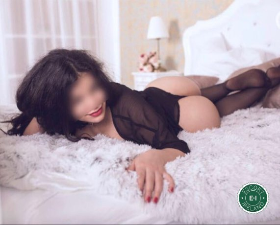 Book a meeting with Shiloh in Dublin 4 today