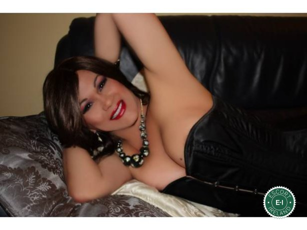 Book a meeting with Vanessa TS in Dublin 6 West today