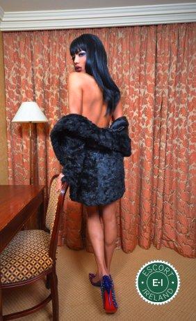 Kimber TV is a very popular Brazilian escort in Dublin 1, Dublin
