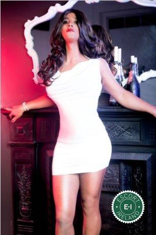 TV Sabryna XL is a super sexy Brazilian escort in Dublin 1, Dublin