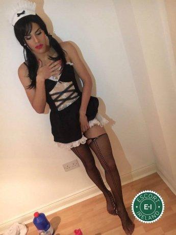 TV Tinker Bell  is a super sexy Brazilian escort in Limerick City, Limerick