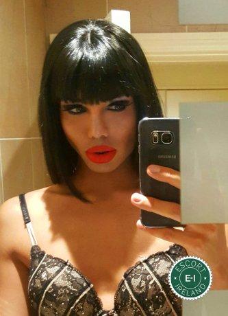 Kimber TV is a sexy Brazilian escort in Dublin 1, Dublin