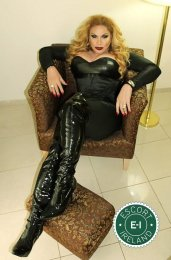 Book a meeting with TS Brigitte Von Bombom in Cork City today