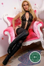 Book a meeting with TS Carla Gold in Swinford today