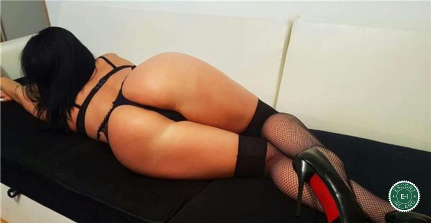 Meet the beautiful Rose in Dublin 15  with just one phone call