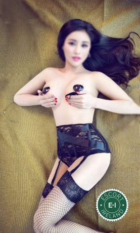 Ella 66  is a hot and horny Chinese Escort from Dublin 1