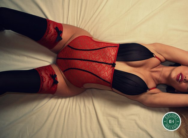 Book a meeting with Arianna in Dublin 24 today