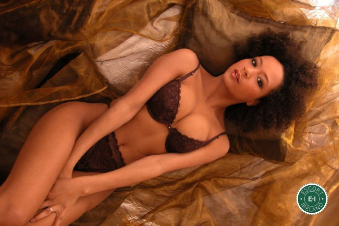 The massage providers in Dublin 4 are superb, and Sensual Professional Masseuse  is near the top of that list. Be a devil and meet them today.