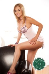 Book a meeting with Daria in Cork City today