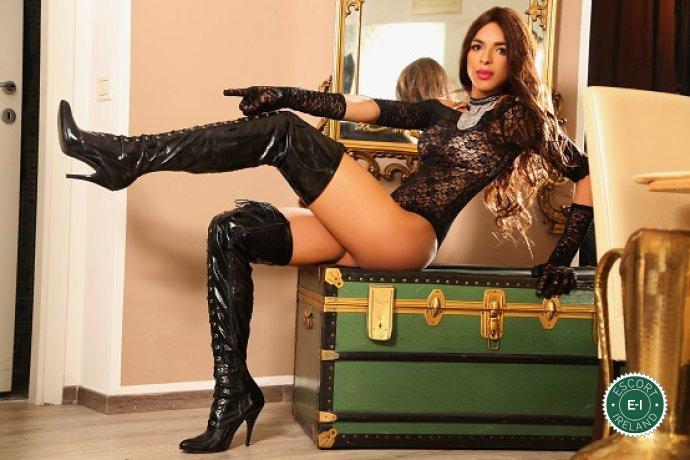 TV Beatriz is a sexy Puerto Rican escort in Galway City, Galway