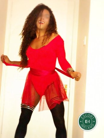 Book a meeting with Alejandra TV in Galway City today