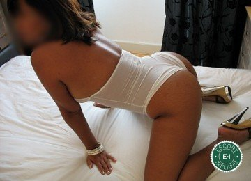The massage providers in Dublin 9 are superb, and Laila Sexy Massage is near the top of that list. Be a devil and meet them today.