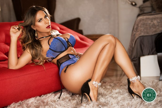 Book a meeting with TS Aysha Garbatelli in Dublin 9 today