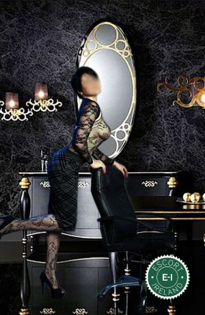 Royal Massage is one of the incredible massage providers in Dublin 24, Dublin. Go and make that booking right now