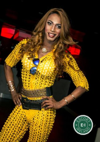 Black Panther Michelley TV is a very popular Puerto Rican escort in Dublin 1, Dublin