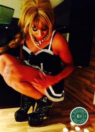 Darla TV  is a hot and horny Venezuelan Escort from Cork City
