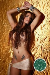 Meet the beautiful TS Patricia Telles in Dublin 8  with just one phone call