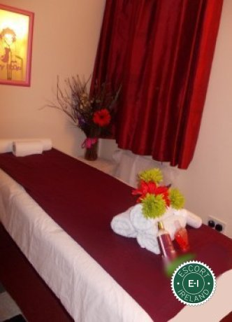 Diosa Erotic Massage is one of the best massage providers in Limerick City, Limerick. Book a meeting today