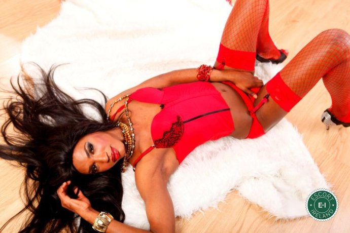 Black Panther Michelley TV is a hot and horny Puerto Rican Escort from
