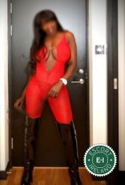 Meet the beautiful Leggy Ashanti in Portadown  with just one phone call