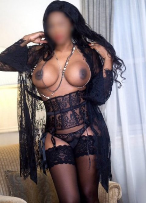 Jazzlynn Cole - escort in Killarney