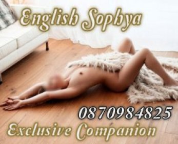 English Sophya - escort in Ballsbridge